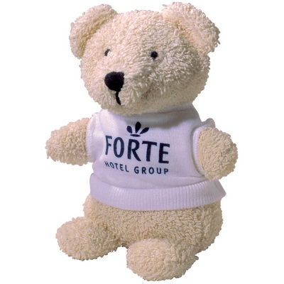 Image of 5 inch Beanie Bear & T-Shirt